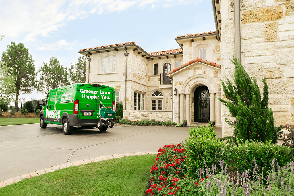 Weedex Lawn Care reviews | Gardeners at 250 E Valley Ridge Boulevard - Lewisville TX